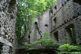 Burg Freudenkoppe
