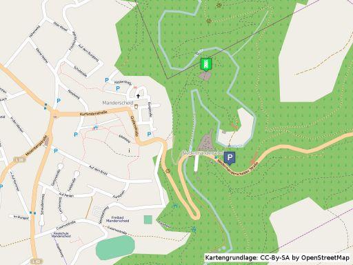 Lageplan der Oberburg in Manderscheid